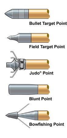 Tipos de Pontas de Flechas